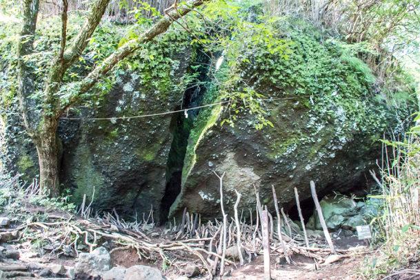 金時宿り石