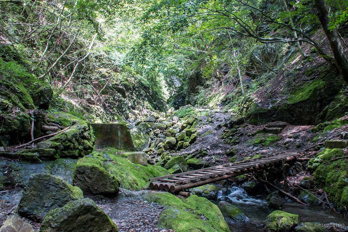 川苔山の景色
