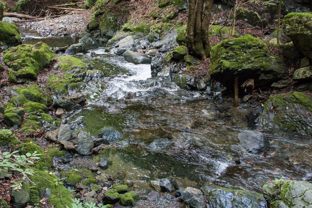 川の流れる道を歩く