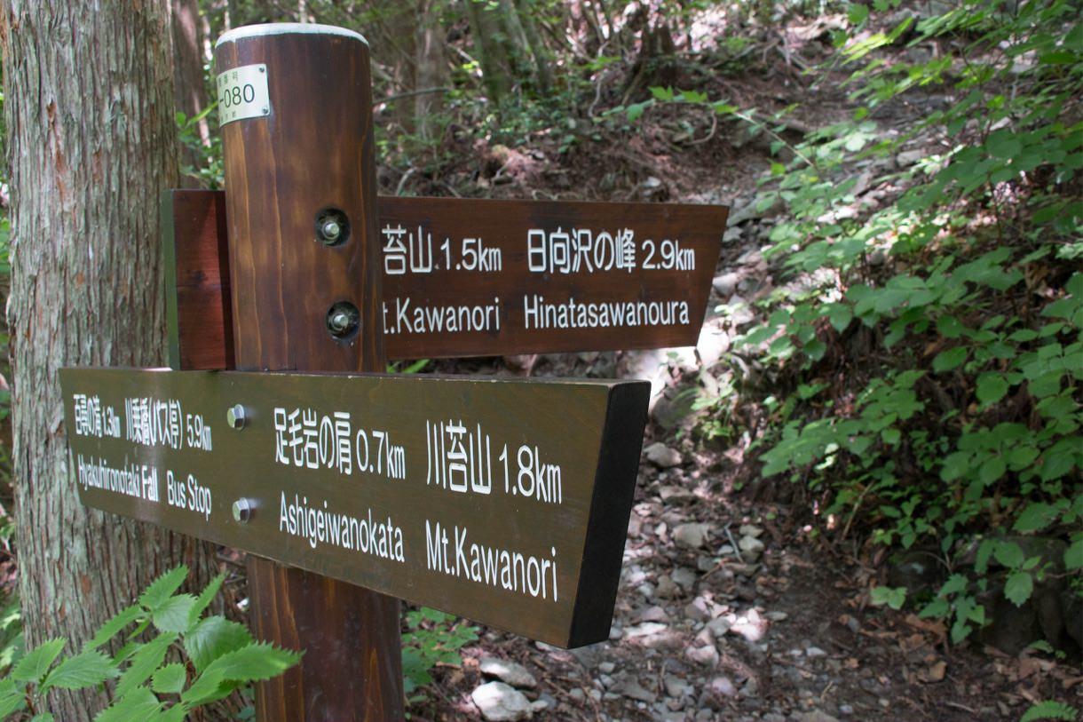 山頂への案内板