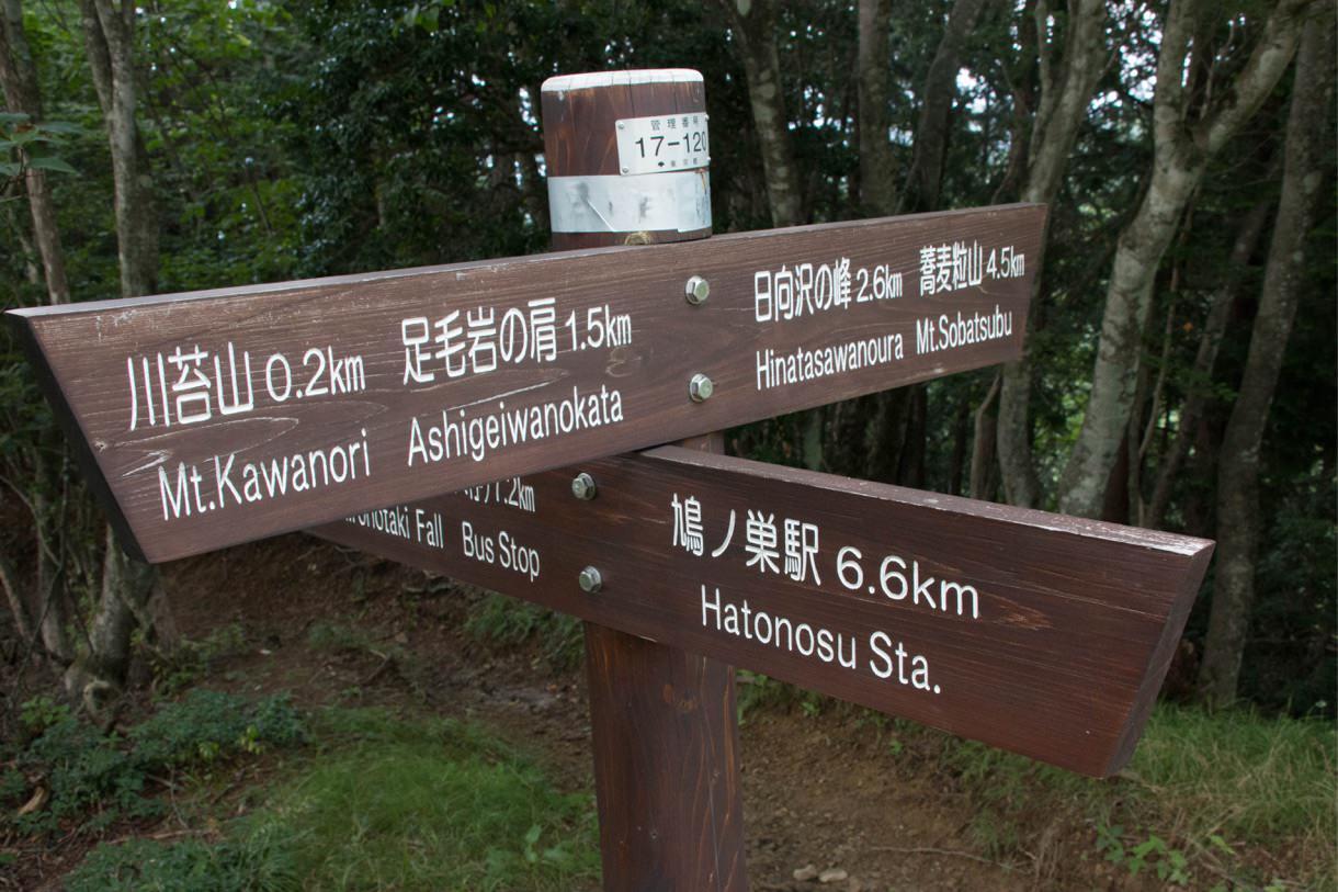 鳩ノ巣駅の方面へ下山