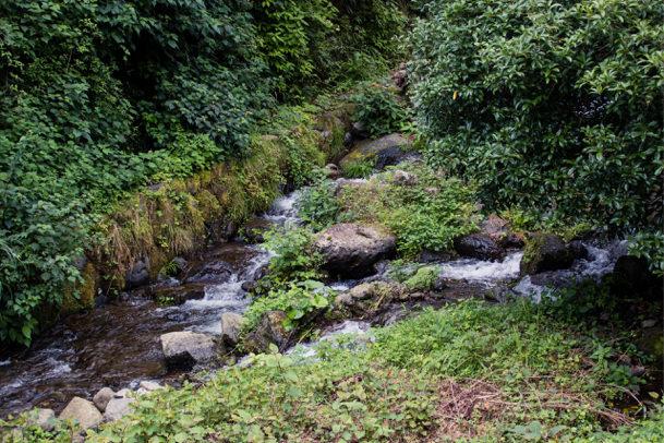 大山入り口の川