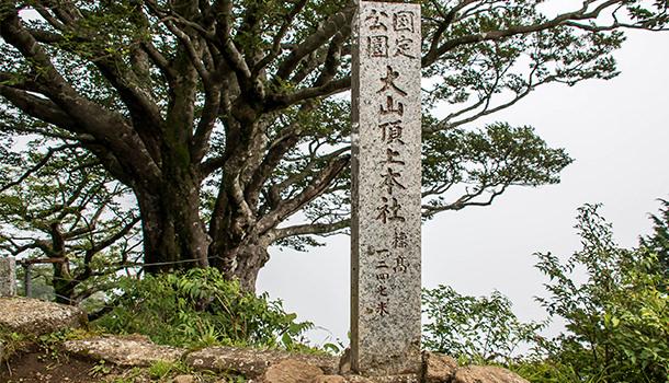 大山登山記事のアイキャッチ