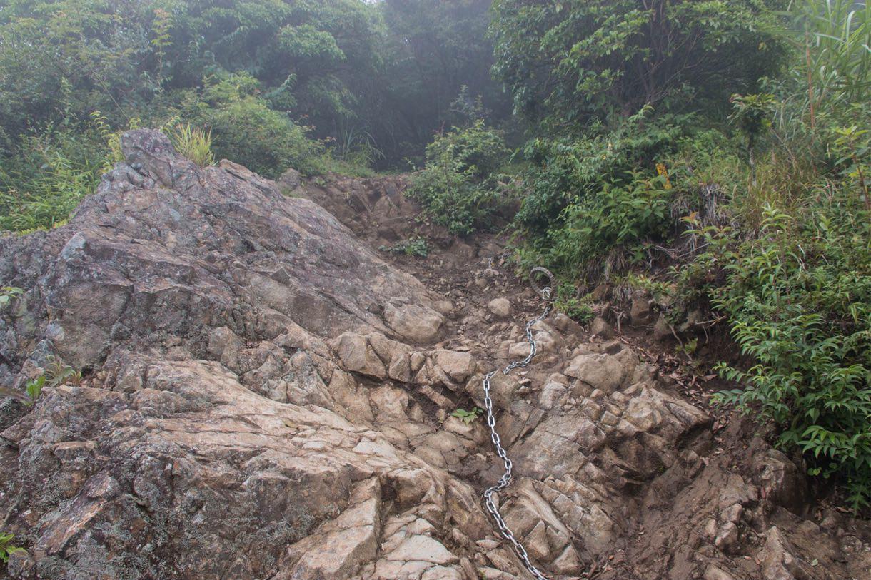 行者ヶ岳への道