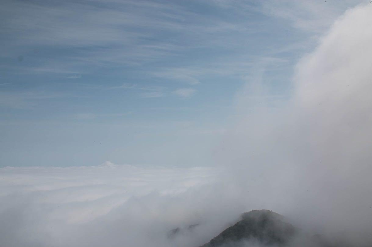 雲の上の塔ノ岳