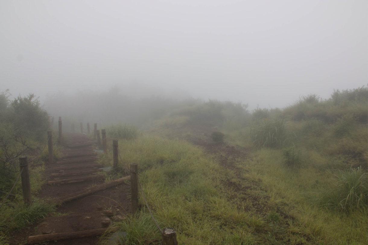 霧が立ち込める山道