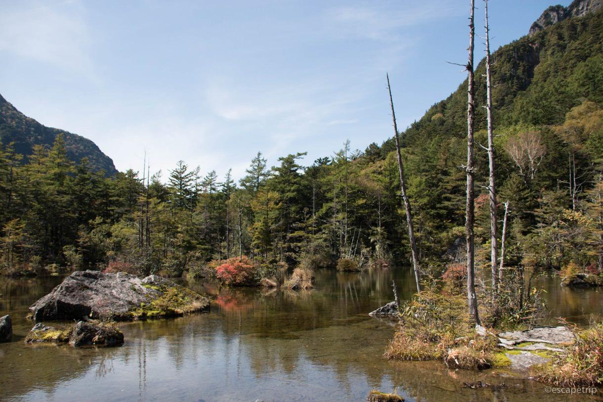 明神池の岩と枯木