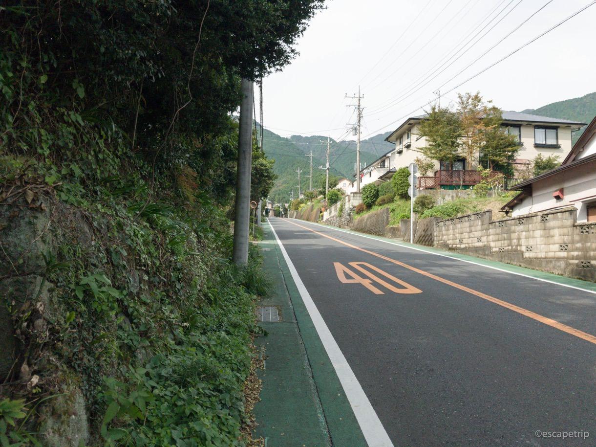 ヤビツ峠登りの途中