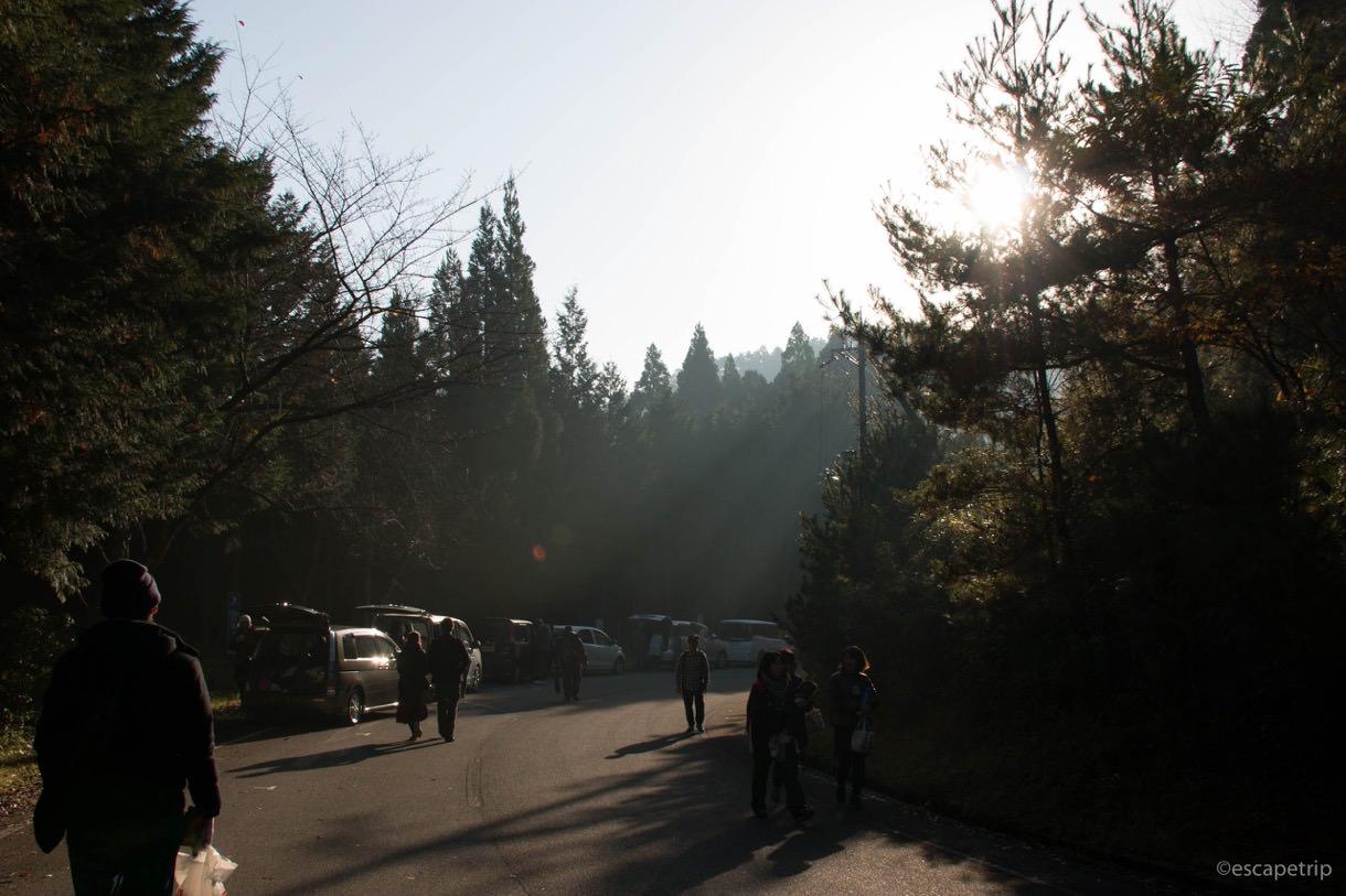 朝日が降り注ぐ立雲峡