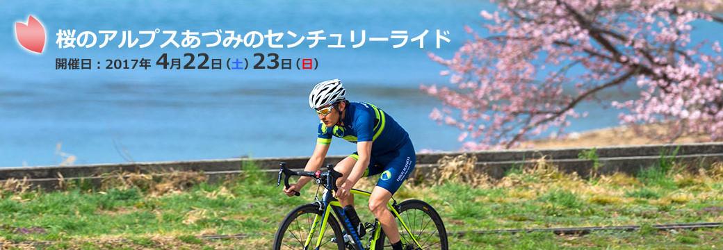 桜のアルプスあづみのセンチュリーライド2017