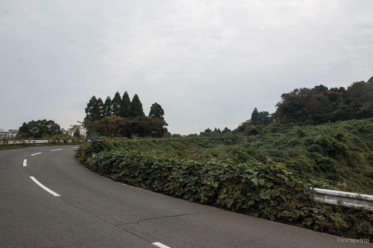 熊本グリーンロードの入口