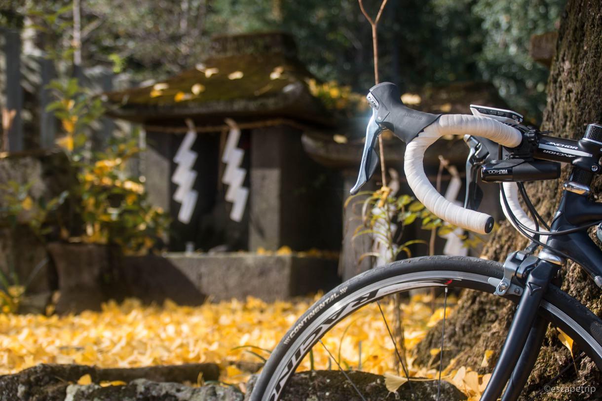 阿蘇神社の紅葉とロードバイク