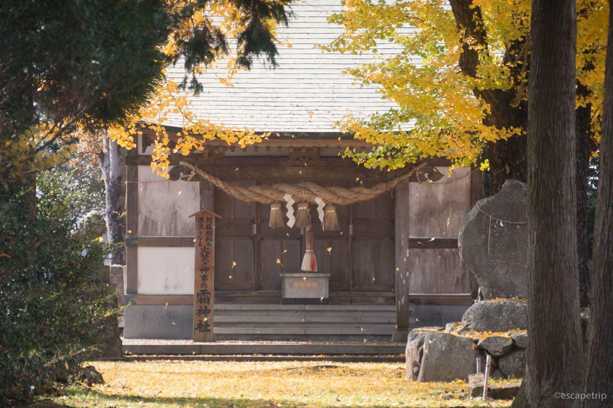 霜神社に舞い散る落ち葉