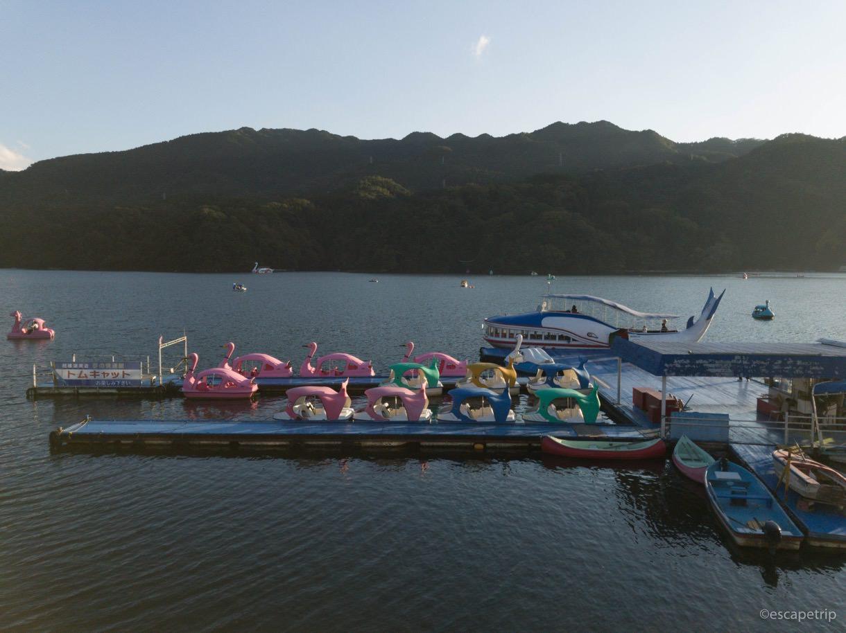 相模湖のスワンボート