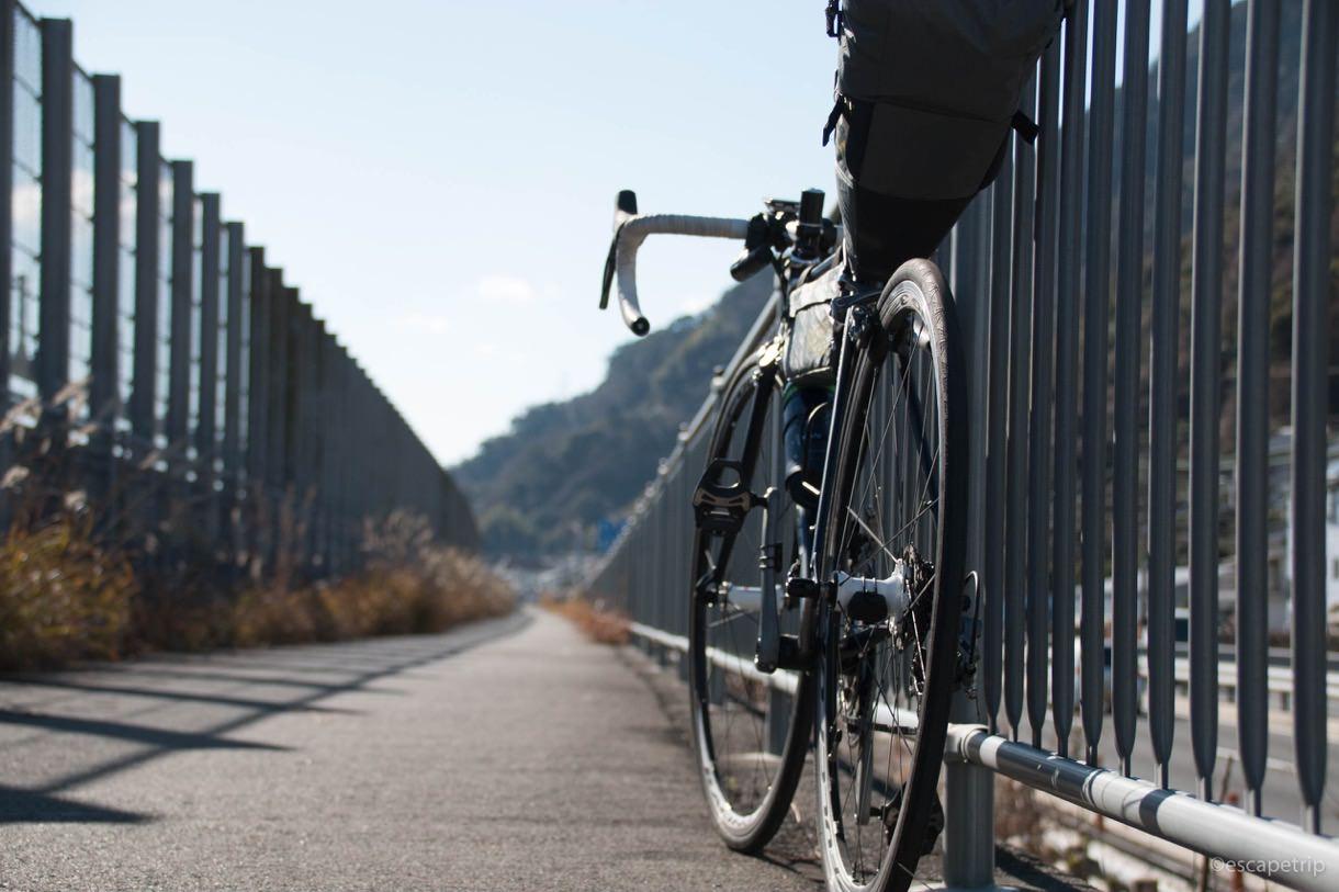 静岡の海沿いをロードバイクで走る