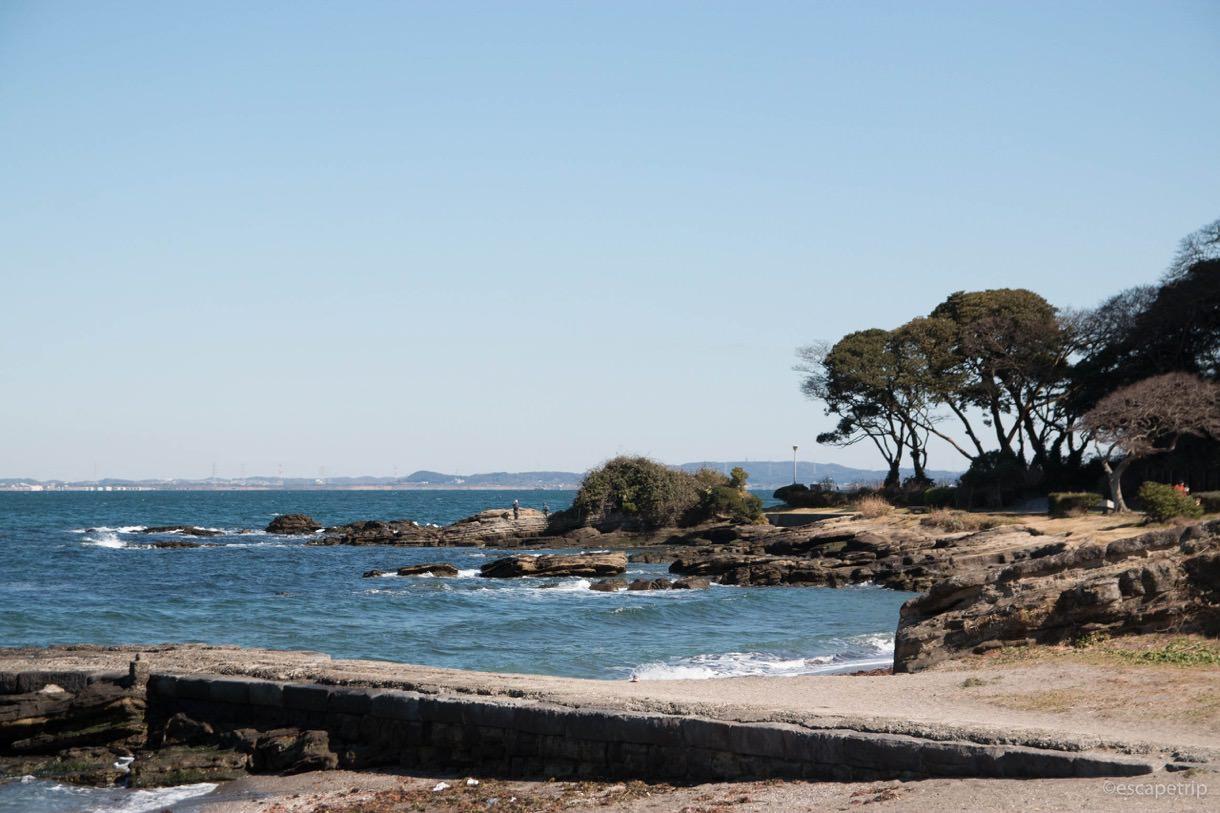 三浦半島の海岸