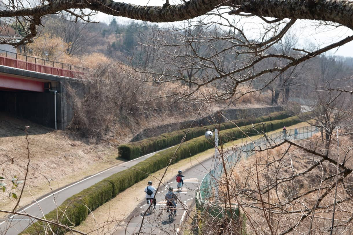 伊豆サイクルスポーツセンターのサイクリングロード