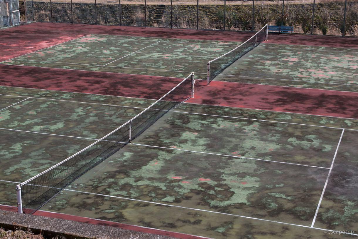 荒れ果てたテニスコート