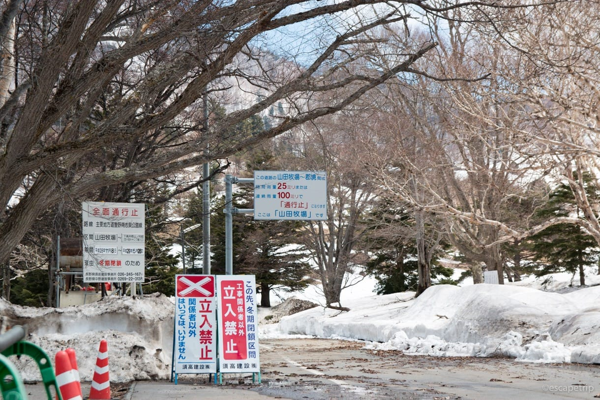 長野県道66号線の通行止めの看板その2
