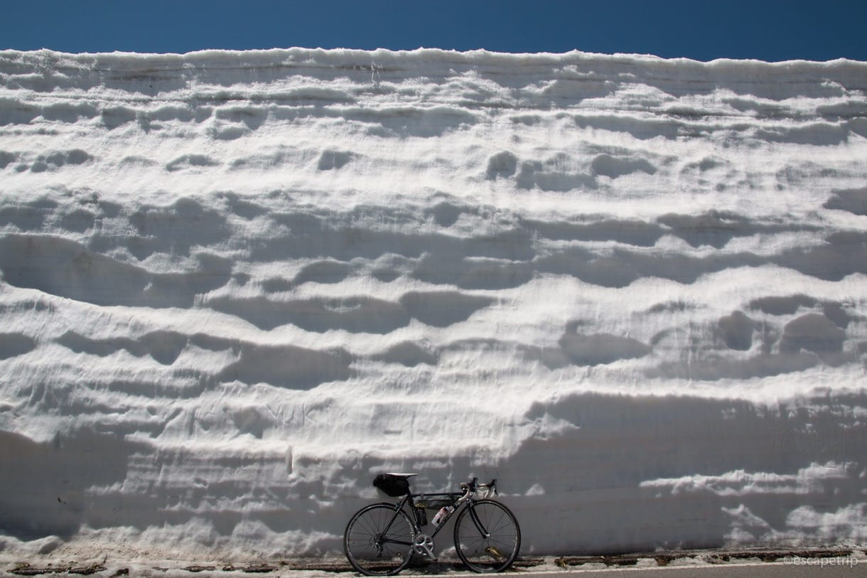渋峠の雪の回廊の高さ