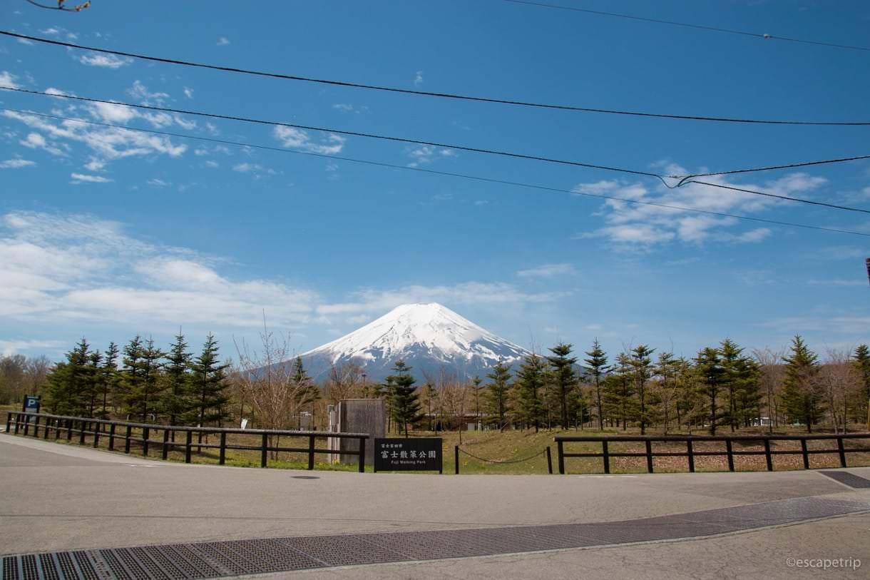 富士散策公園から見る富士山