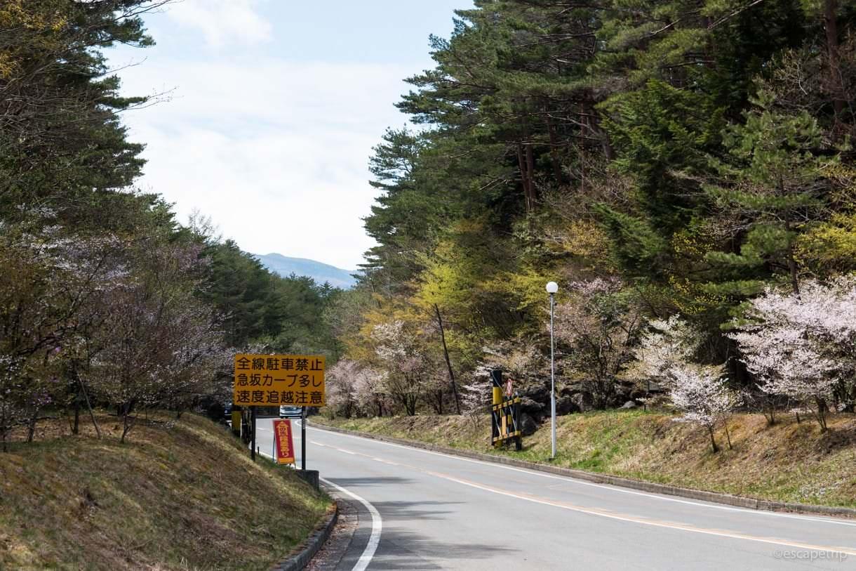 富士スバルラインの上り道