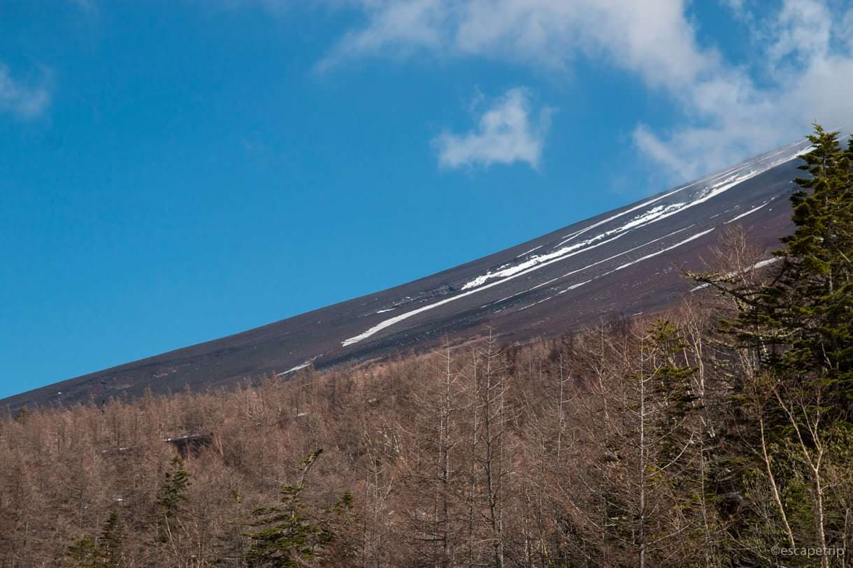 富士山の斜面