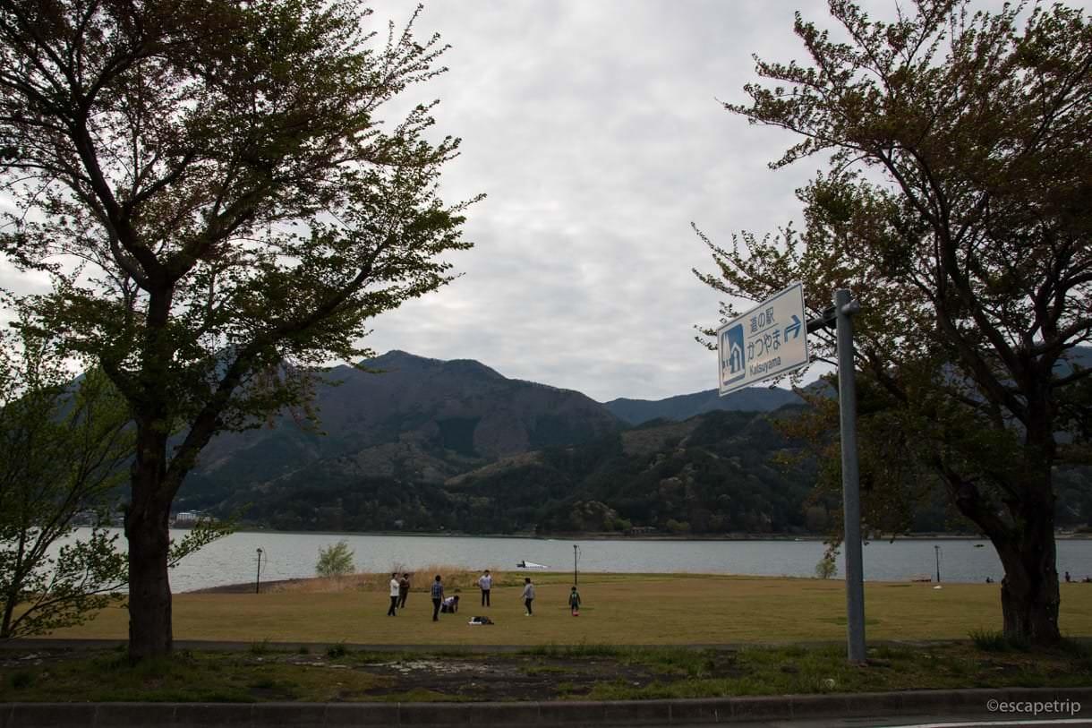 河口湖と芝生