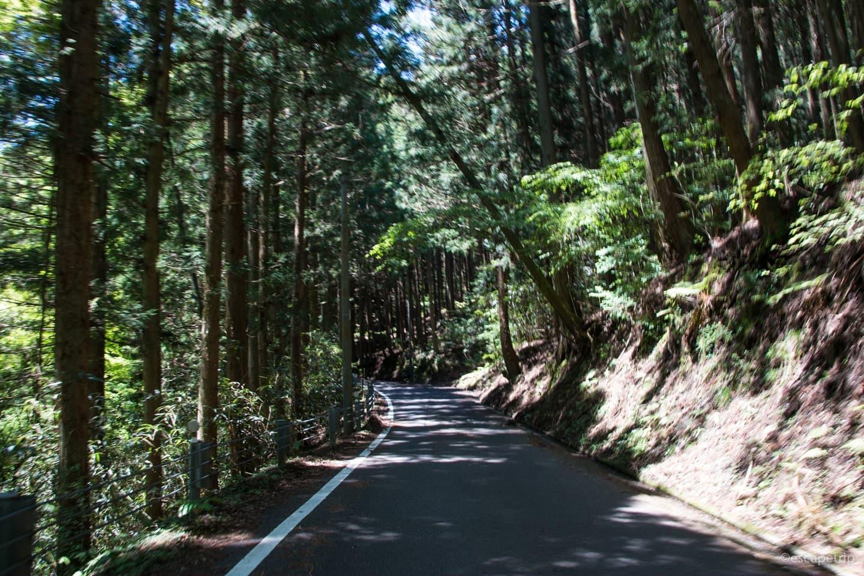 四国カルスト前の坂道