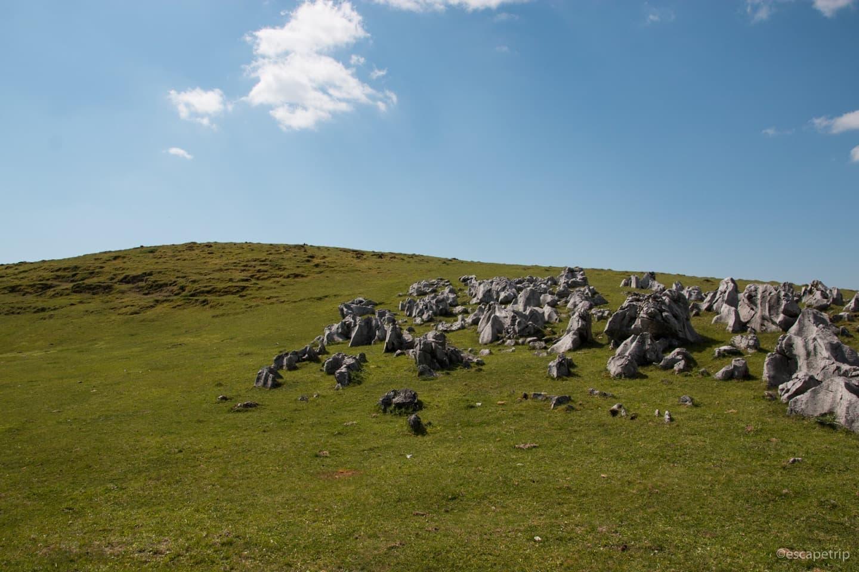 岩と草原の四国カルスト