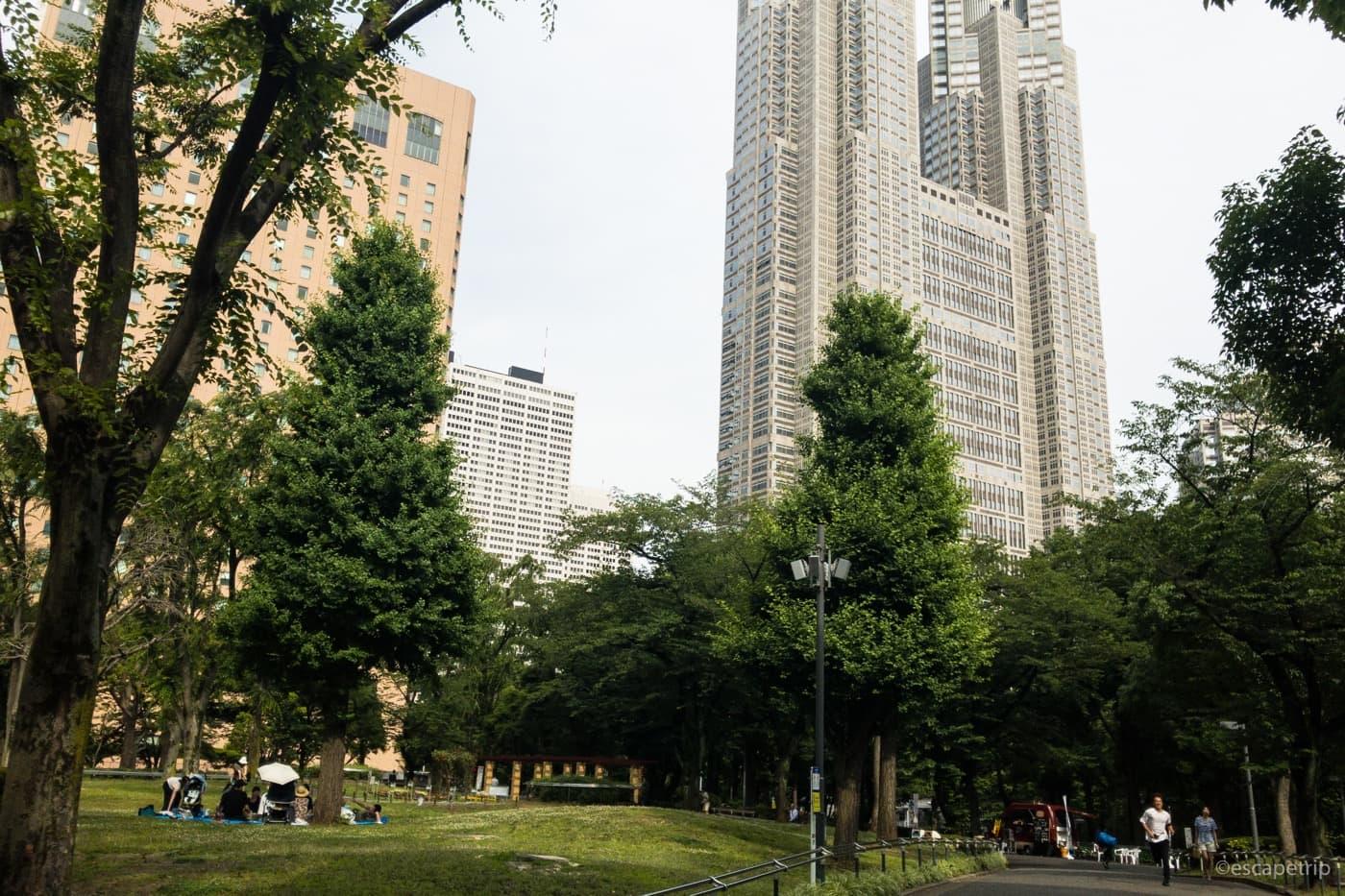 新宿中央公園から見る景色