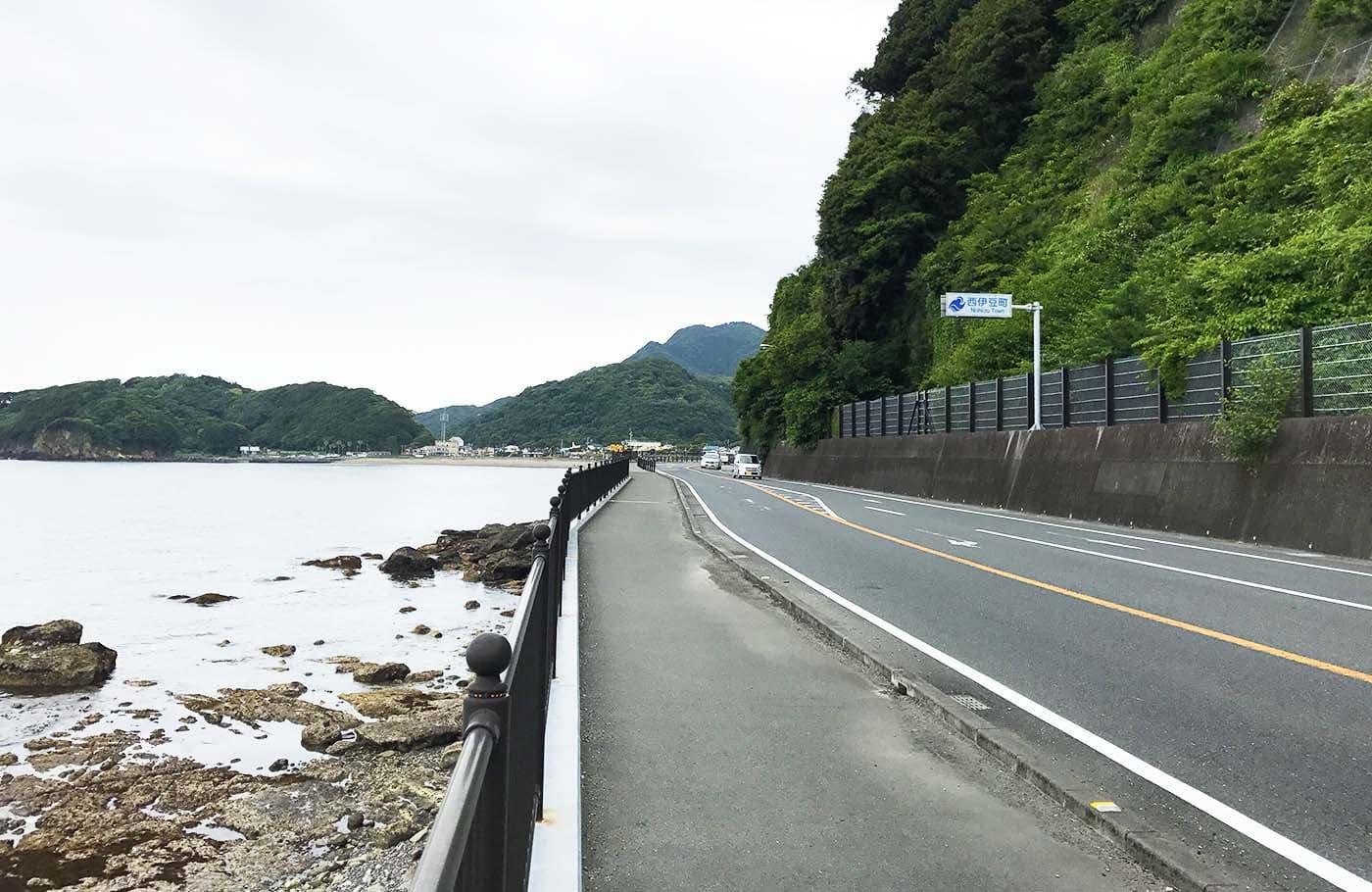 西伊豆の海と道路