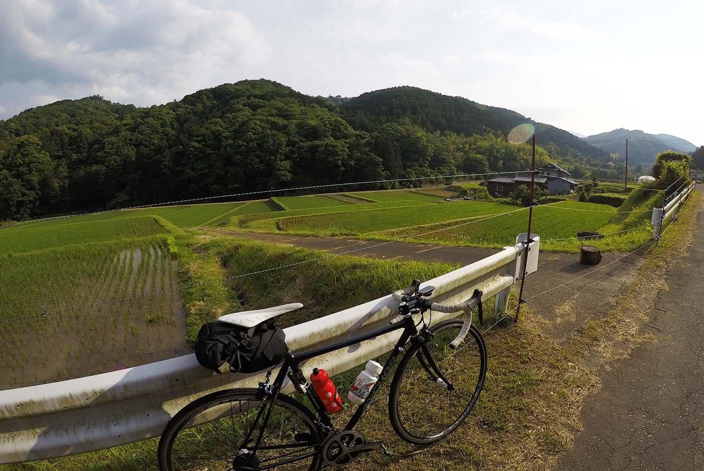 伊豆の田園風景