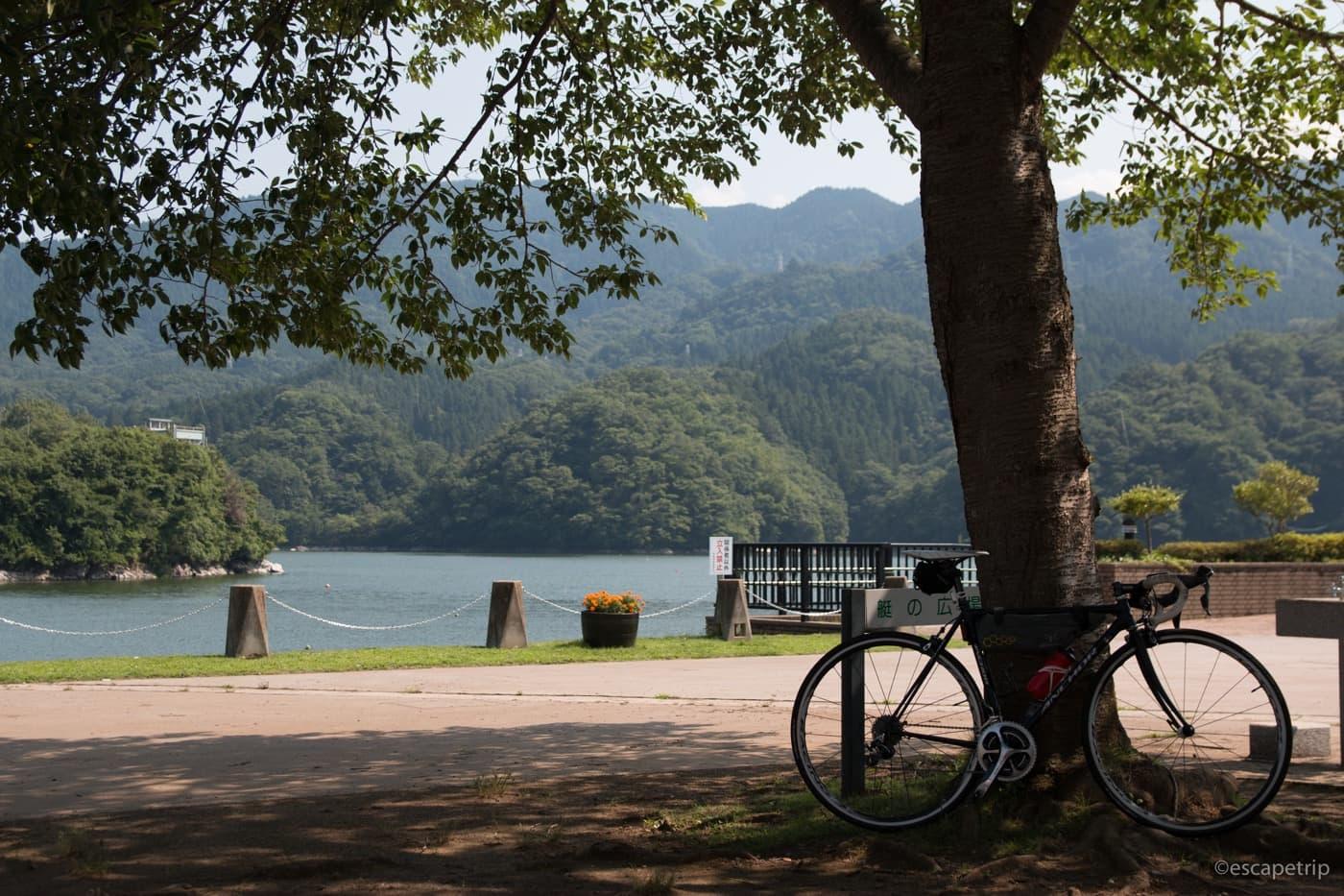 相模湖と木陰とロードバイク