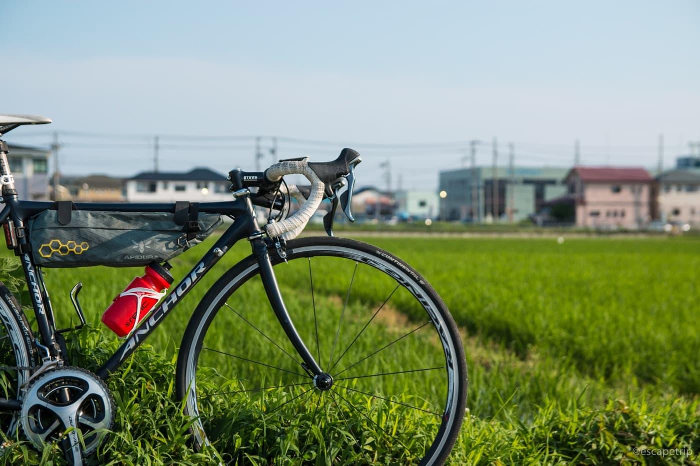 田んぼとロードバイク