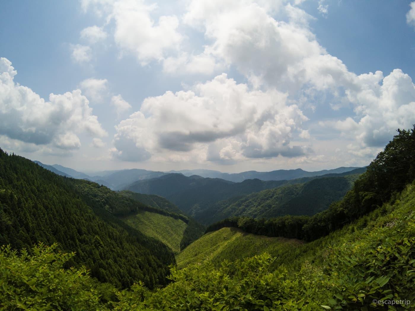風張林道の頂上からの眺めを広角で