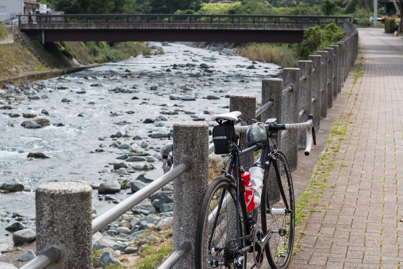 道志川とロードバイク
