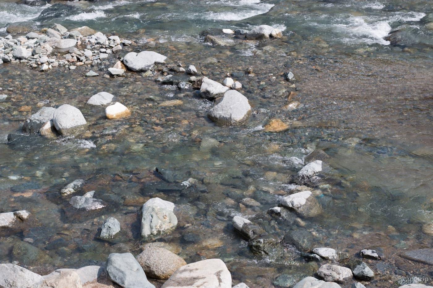 道志川の綺麗な水