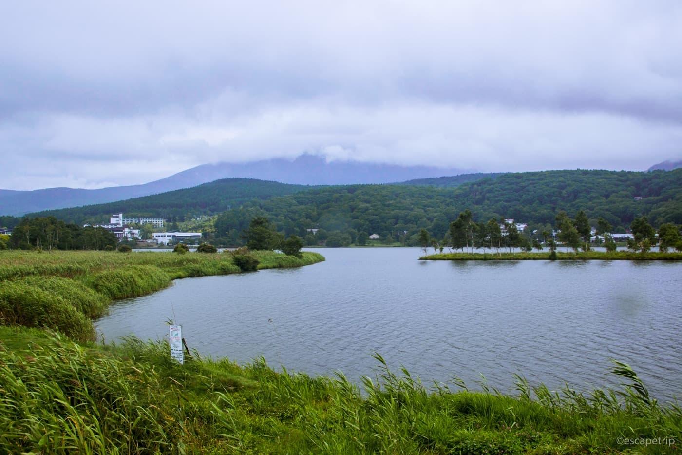白樺湖の湖畔