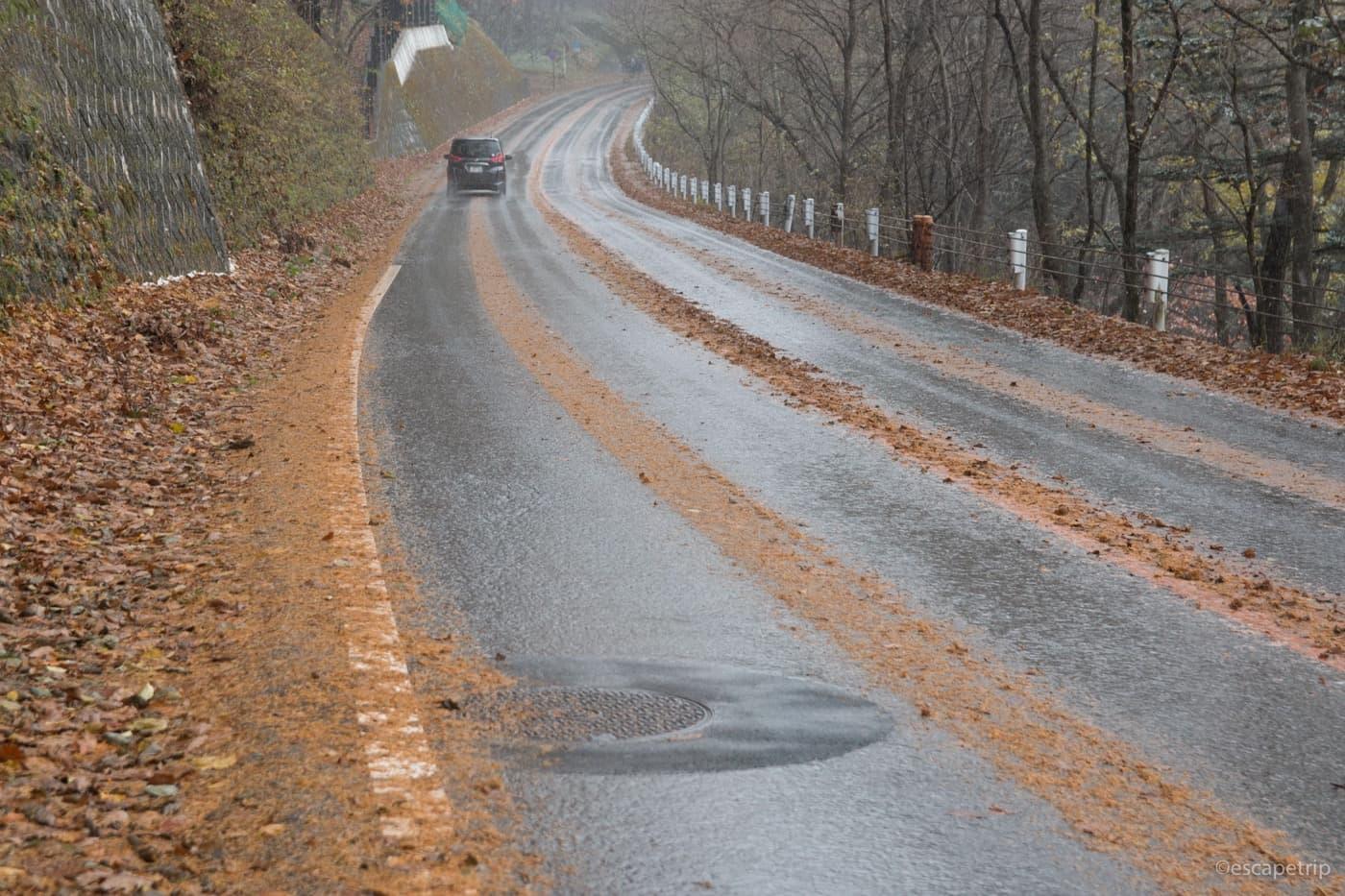 雨で濡れた道