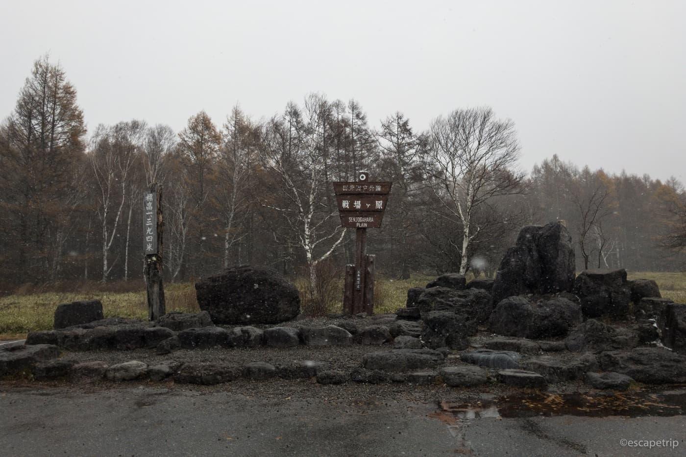 雪の戦場ヶ原