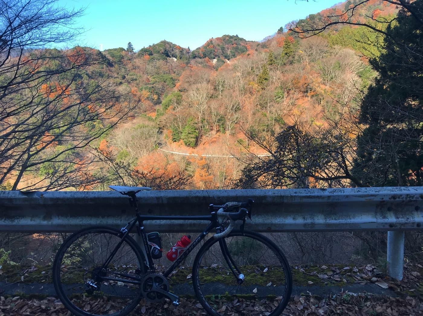裏ヤビツの紅葉とロードバイク