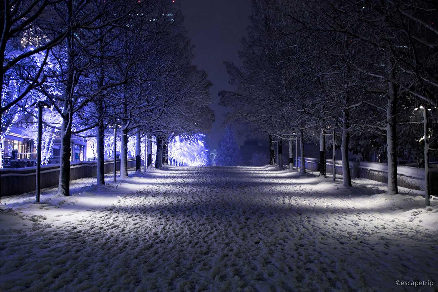 マークイズみなとみらい前の雪