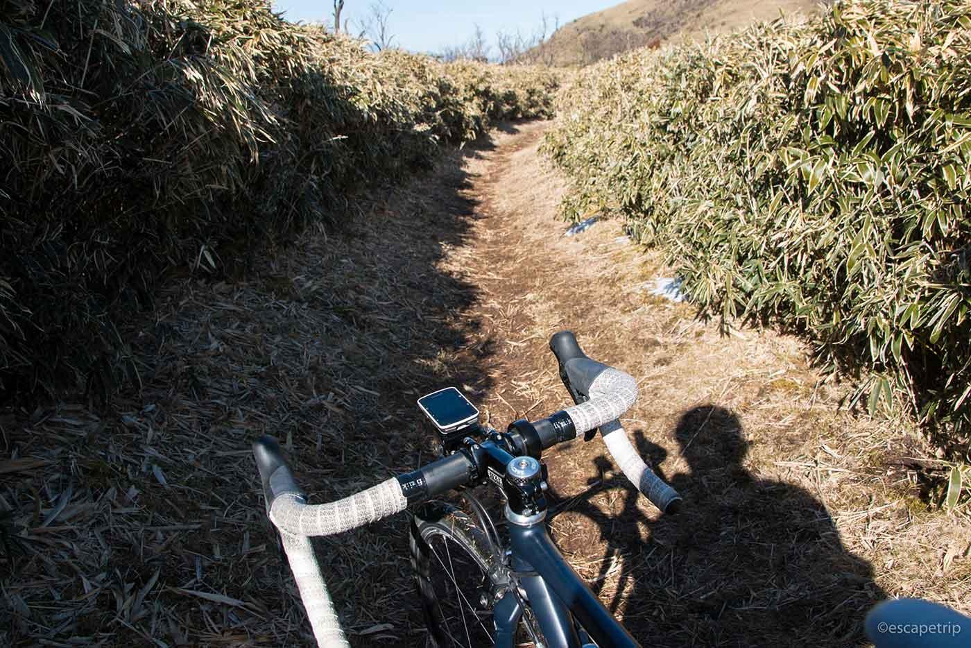 山道とロードバイク