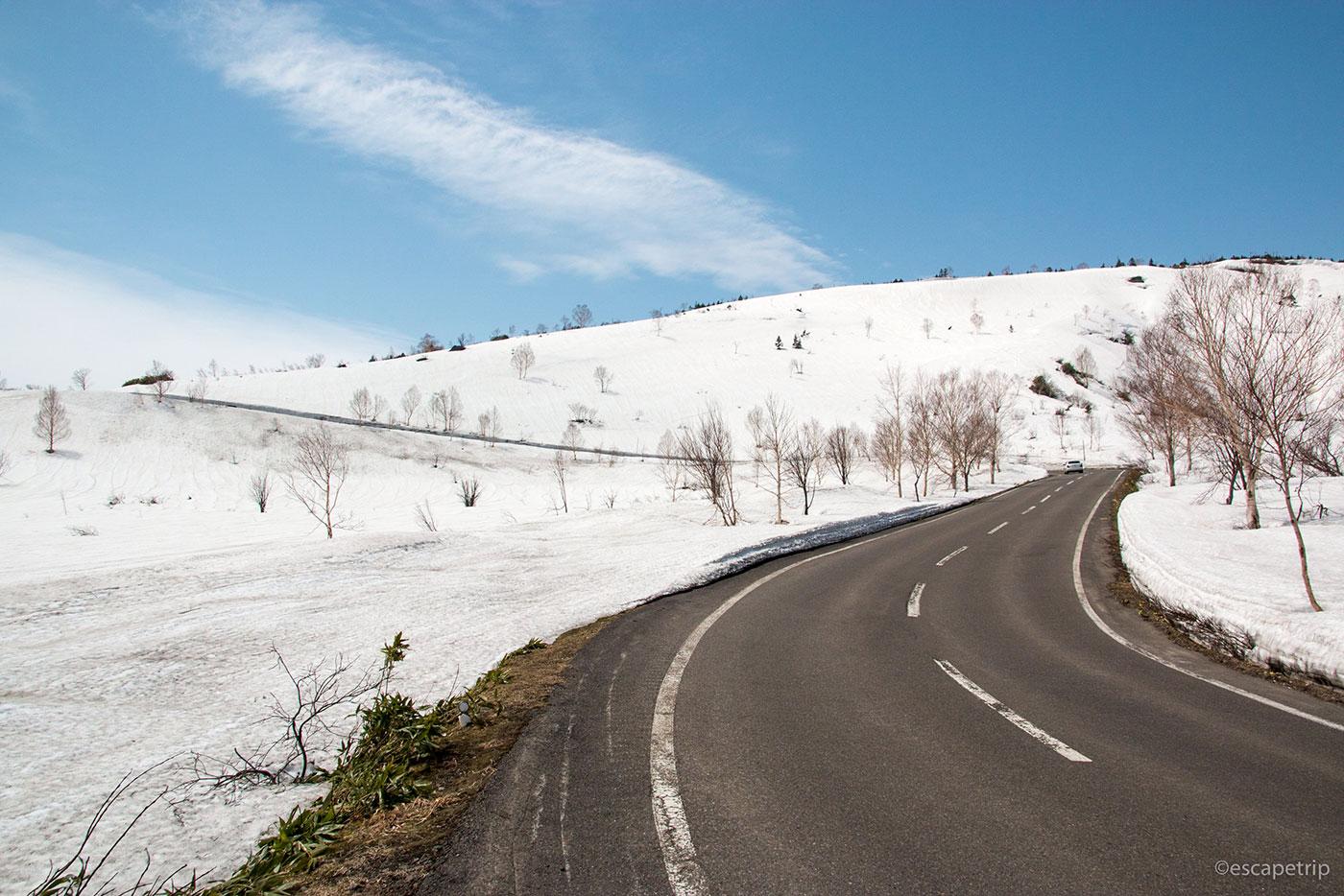 八幡平アスピーテラインの雪