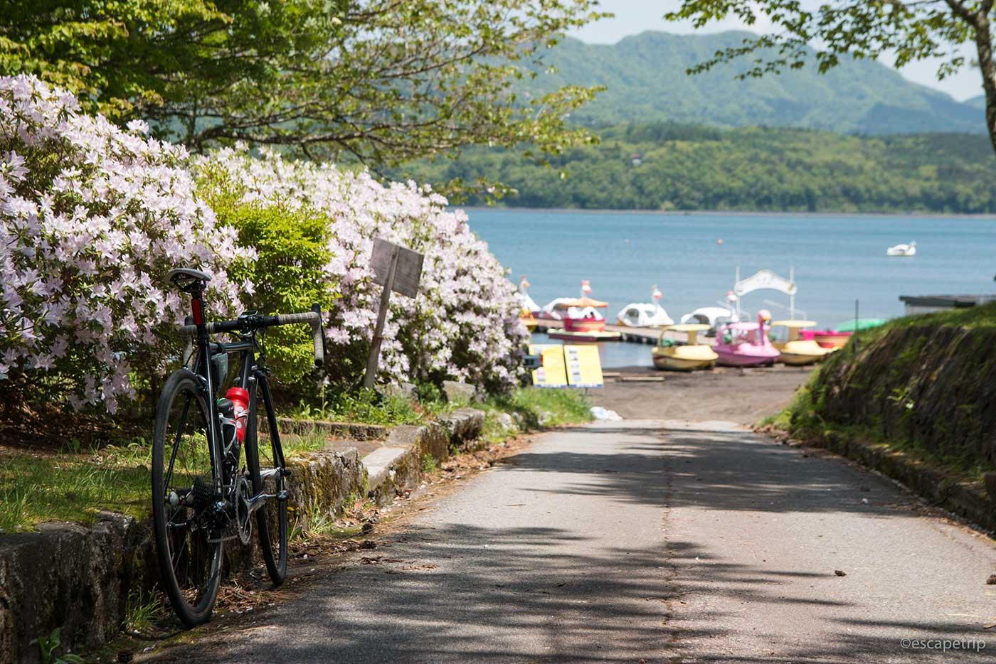 山中湖とロードバイク