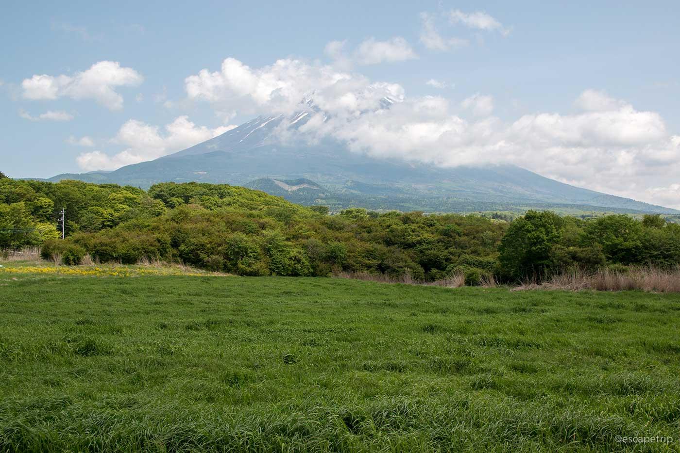 北西から見た富士山