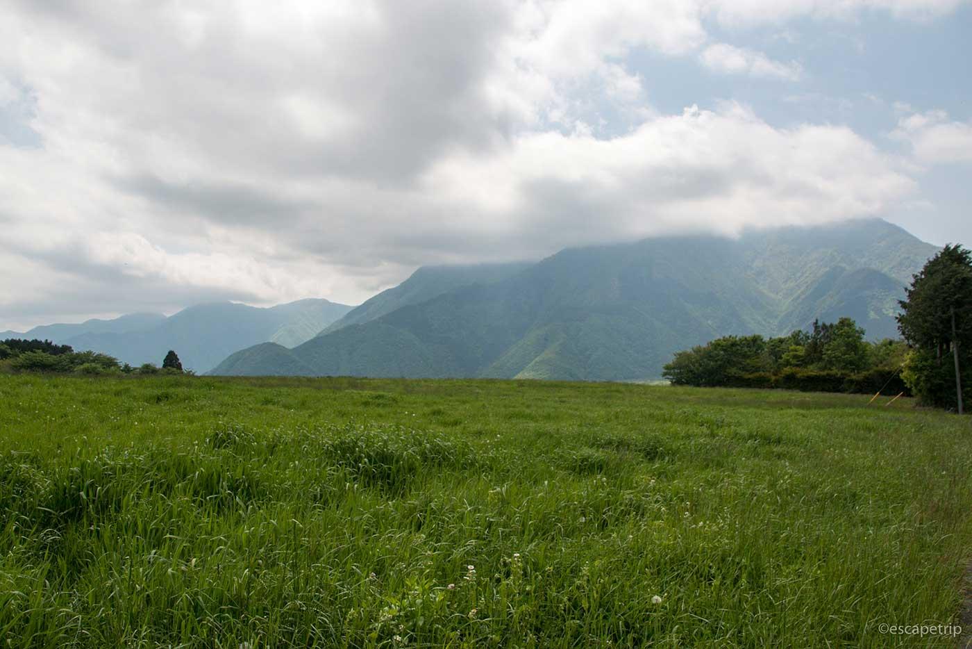 草原と山々