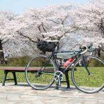 【2018年4月まとめ】更新した記事一覧。桜と雪を満喫した季節だ