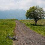 【2018年5月まとめ】更新した記事一覧。新緑が気持ちいいサイクリングの季節に